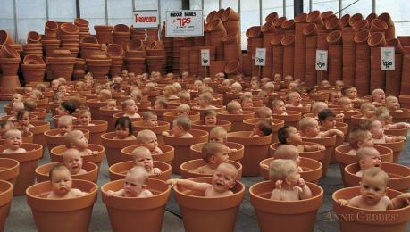 123-pots-anne-geddes